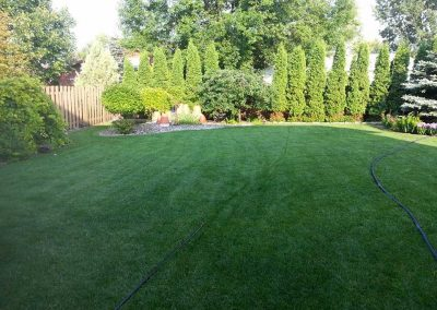 lawn-care_gallery4