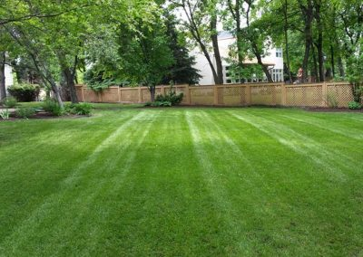 lawn-care_gallery5